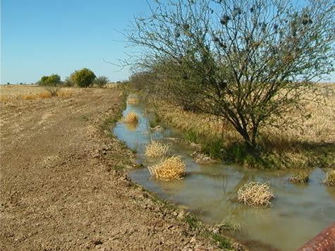 open_chan_irrigation.jpg