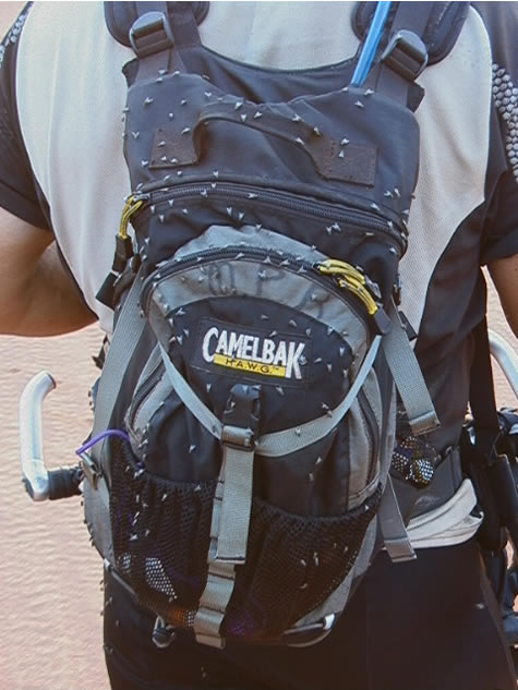 camelbak_flies2.jpg