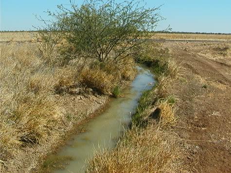 open_chan_irrigation2.jpg