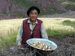 4_woman_potatoes.jpg