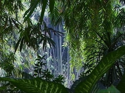 botanic_garden.jpg