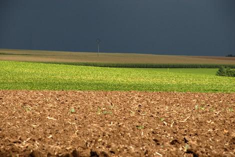 landscape_belgium.jpg